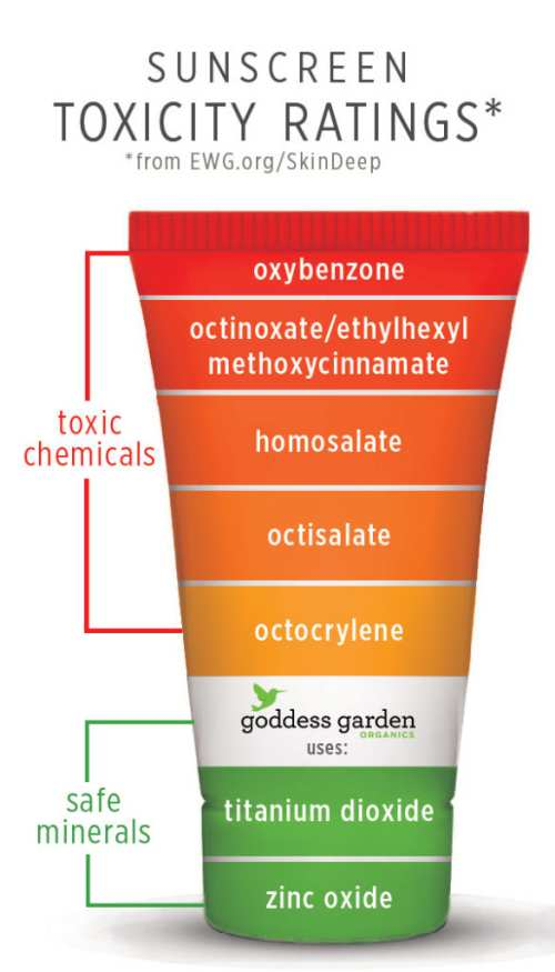 Lav Sunscreen Toxicity Ratings 1